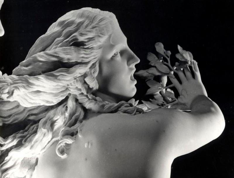 Galleria Borghese maggio 2017